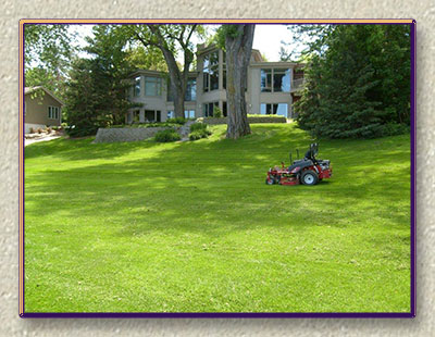 Contractor Cutting Grass