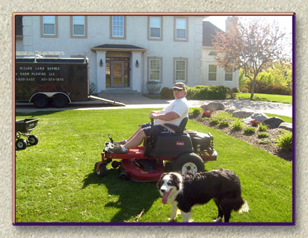 Pet-Friendly Lawn Care Services